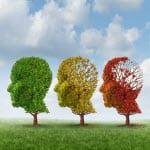Recht auf Vergessen? – Konsequenzen des EuGH-Urteils