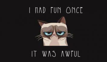 US-Jury spricht Grumpy Cat 710.000 USD Schadensersatz zu