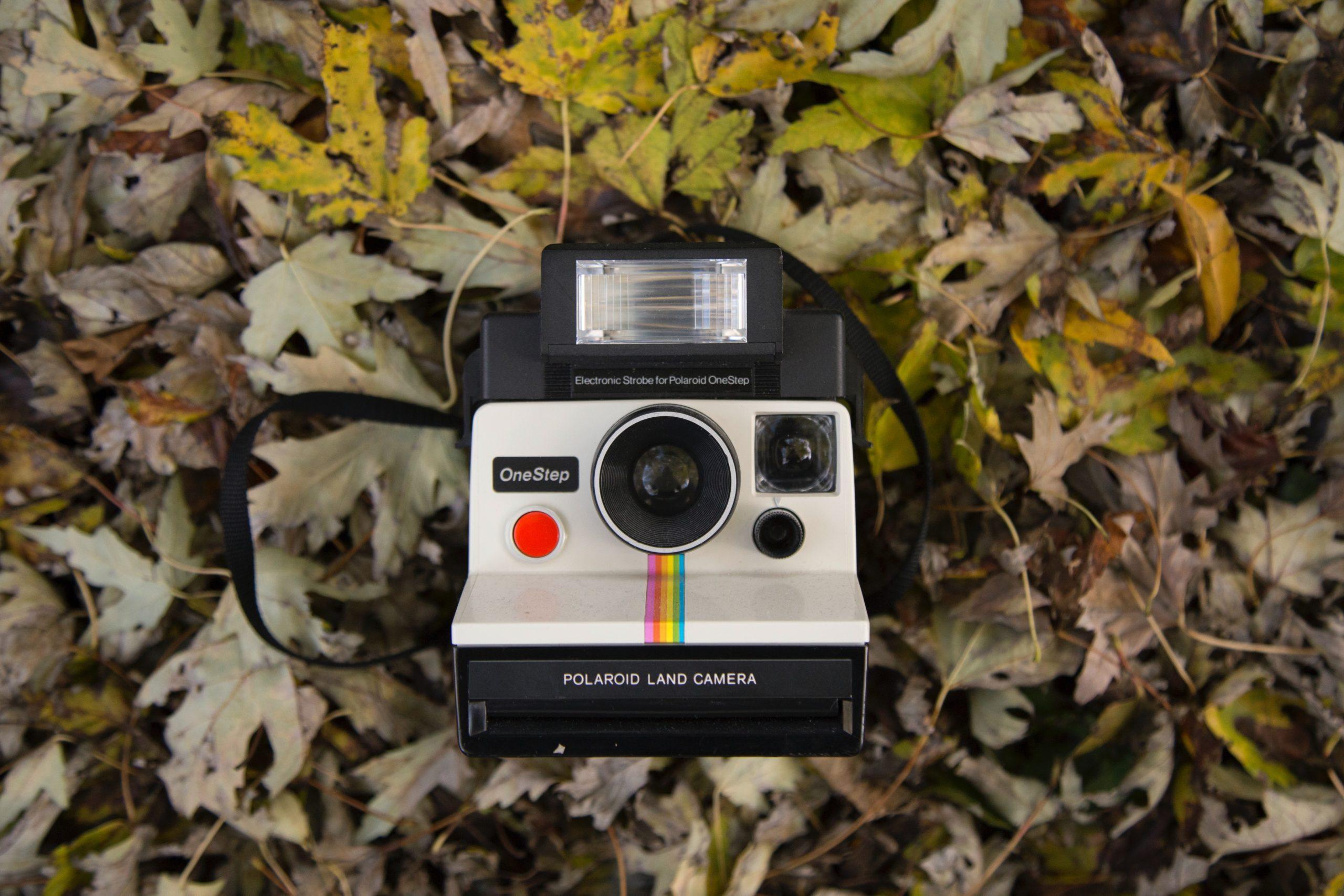 Polaroid Sofortbildkamera Rufausnutzung